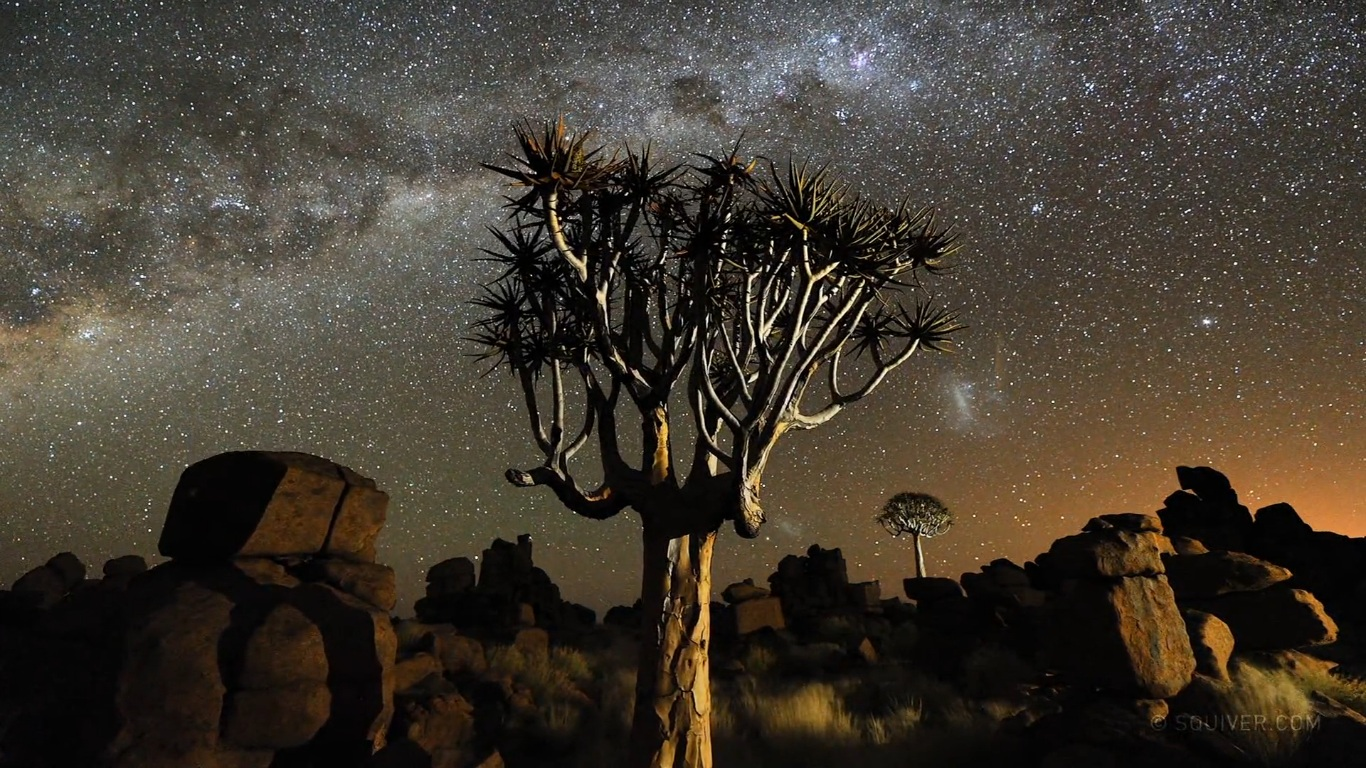 Cena de Namibian Nights