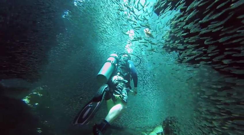 GoPro: 1 Million Fish